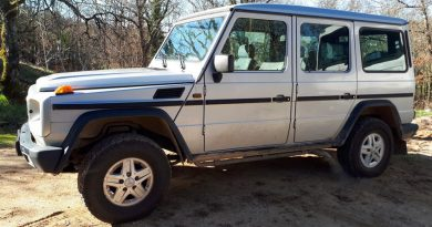 Mercedes 300 GE Long 5 portes de 1992 / 12000€